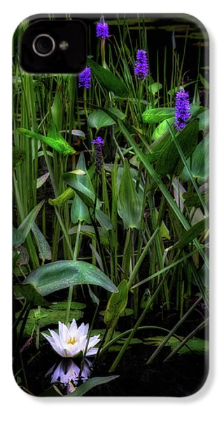 IPhone 4 Case featuring the photograph Summer Swamp 2017 by Bill Wakeley