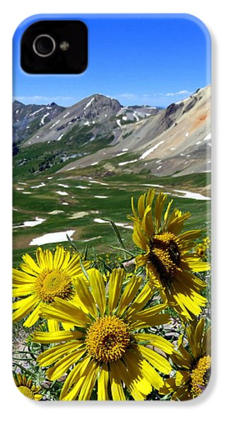 Summer Tundra IPhone 4 Case by Karen Shackles