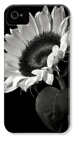 Sunflower In Black And White IPhone 4 Case by Endre Balogh