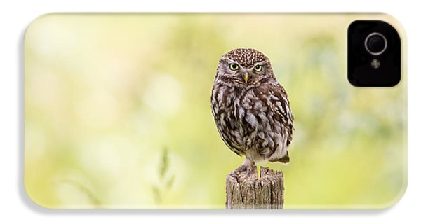 Sunken In Thoughts - Staring Little Owl IPhone 4 Case by Roeselien Raimond