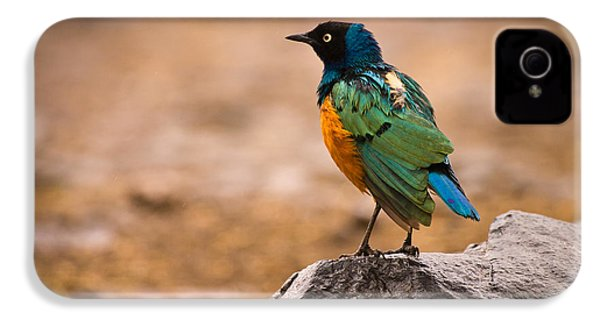 Superb Starling IPhone 4 / 4s Case by Adam Romanowicz