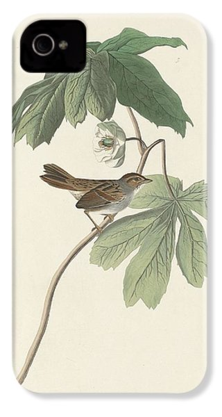 Swamp Sparrow IPhone 4 Case by Rob Dreyer
