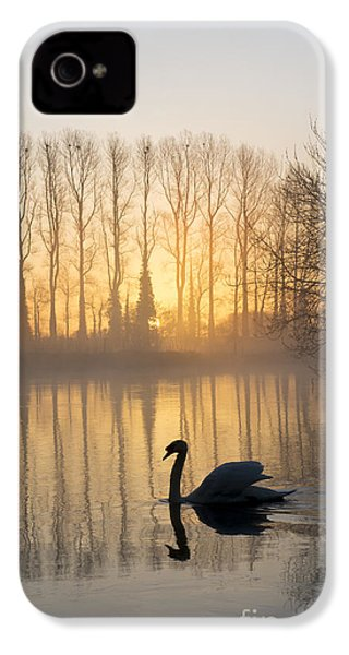 Swan Lake IPhone 4 Case by Tim Gainey