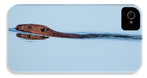 Swimming With The Beaver IPhone 4 Case by Bill Wakeley