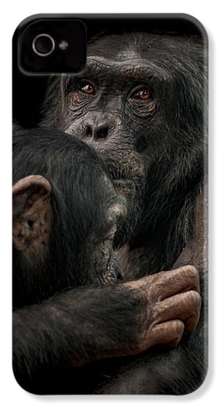 Tenderness IPhone 4 Case by Paul Neville