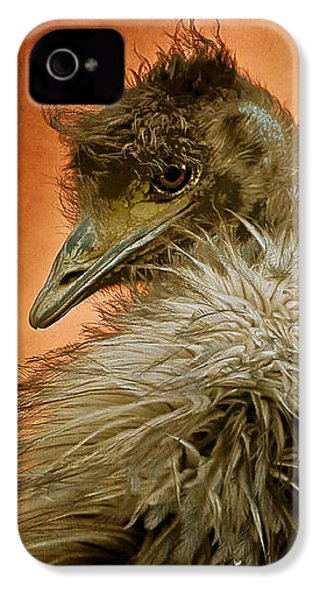 That Shy Come-hither Stare IPhone 4 Case by Lois Bryan