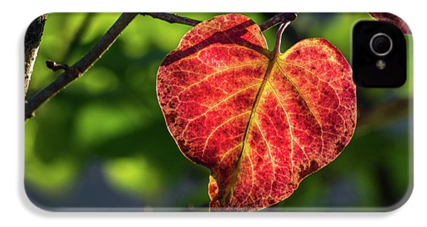IPhone 4 Case featuring the photograph The Autumn Heart by Bill Pevlor