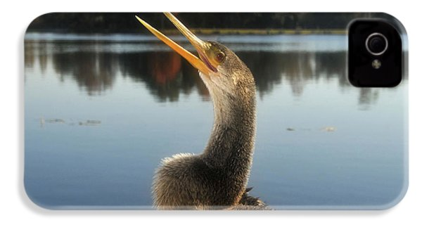 The Great Golden Crested Anhinga IPhone 4 / 4s Case by David Lee Thompson
