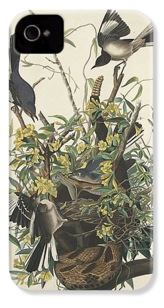 The Mockingbird IPhone 4 Case by Dreyer Wildlife Print Collections