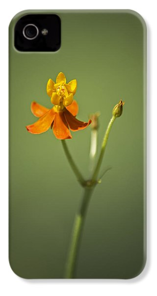 The One - Asclepias Curassavica - Butterfly Milkweed IPhone 4 Case by Johan Hakansson