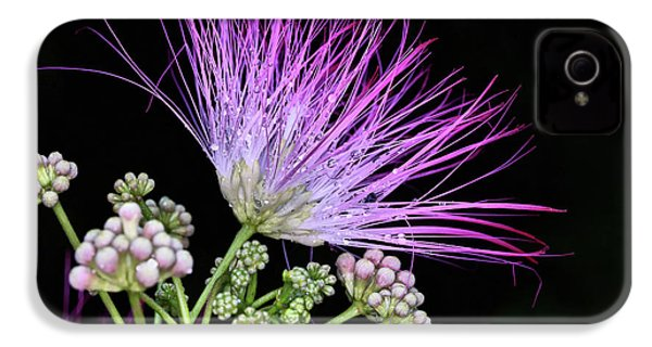 The Pink Mimosa Flower IPhone 4 Case by JC Findley