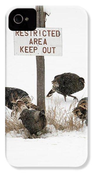 The Turkey Patrol IPhone 4 Case by Mike Dawson