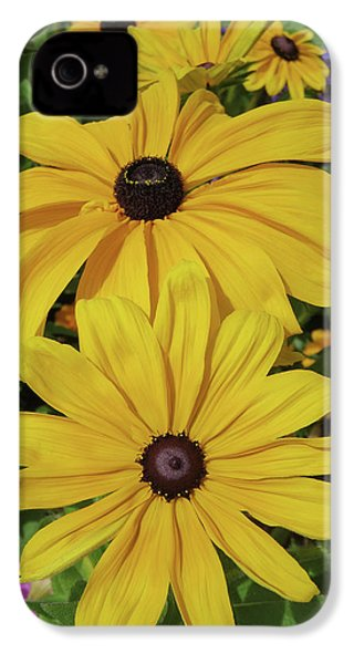 Thirteen IPhone 4 Case by David Chandler