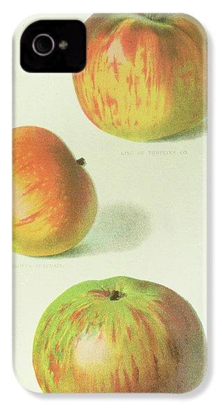Three Apples IPhone 4 Case