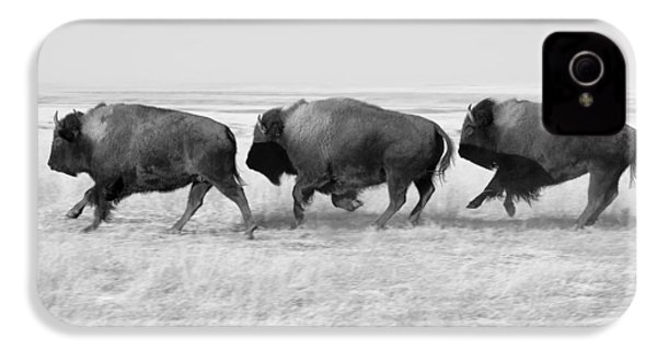 Three Buffalo In Black And White IPhone 4 Case by Todd Klassy