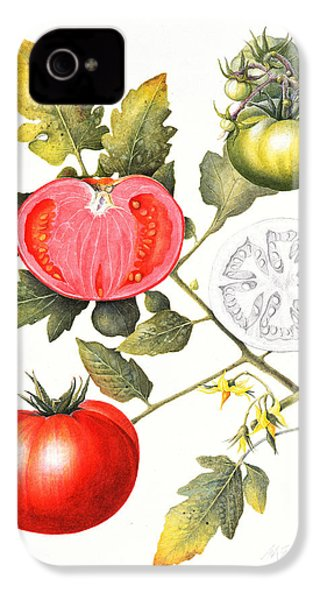 Tomatoes IPhone 4 Case by Margaret Ann Eden