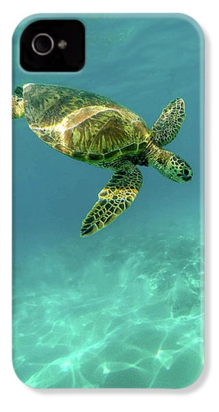 Tortoise IPhone 4 Case by Happy Home Artistry