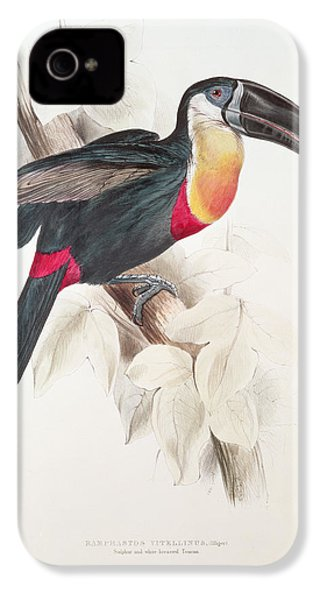 Toucan IPhone 4 Case by Edward Lear