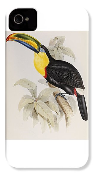 Toucan IPhone 4 Case by John Gould