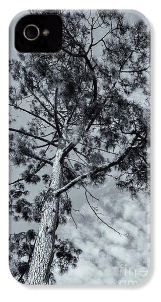 IPhone 4 Case featuring the photograph Towering by Linda Lees