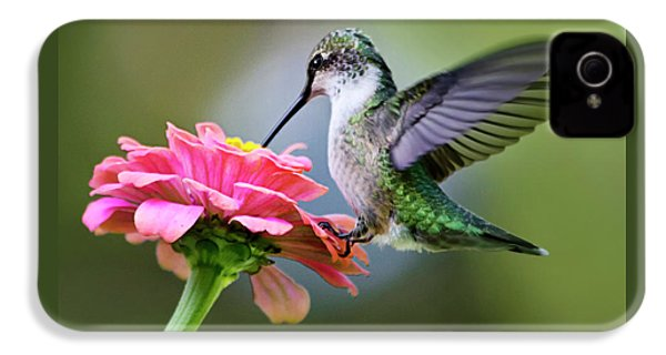 Tranquil Joy Hummingbird Square IPhone 4 Case by Christina Rollo