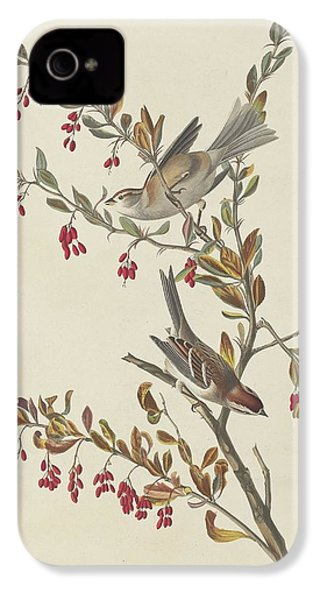 Tree Sparrow IPhone 4 Case by Rob Dreyer