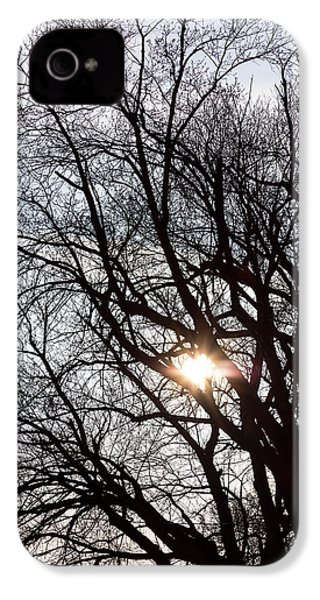 IPhone 4 Case featuring the photograph Tree With A Heart by James BO Insogna