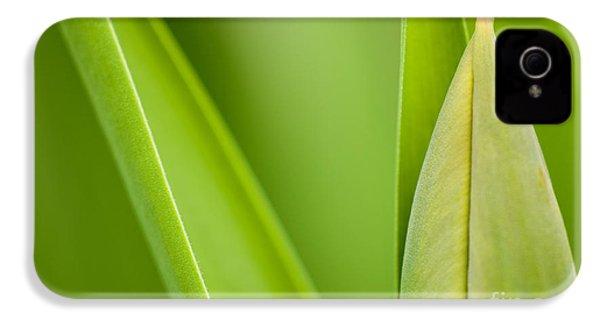 Tulip IPhone 4 Case by Silke Magino
