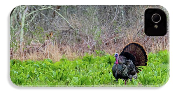 IPhone 4 Case featuring the photograph Turkey And Cabbage by Bill Wakeley