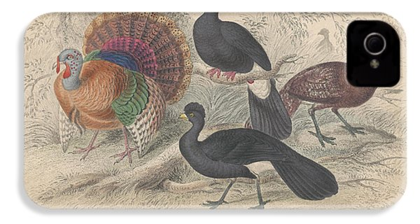 Turkeys IPhone 4 Case by Rob Dreyer