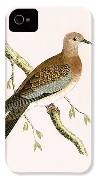 Turtle Dove IPhone 4 Case