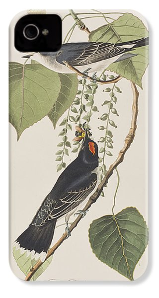 Tyrant Fly Catcher IPhone 4 Case by John James Audubon