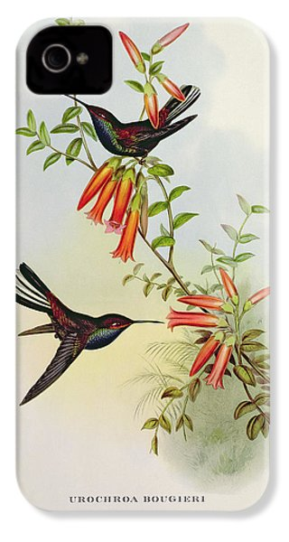 Urochroa Bougieri IPhone 4 / 4s Case by John Gould