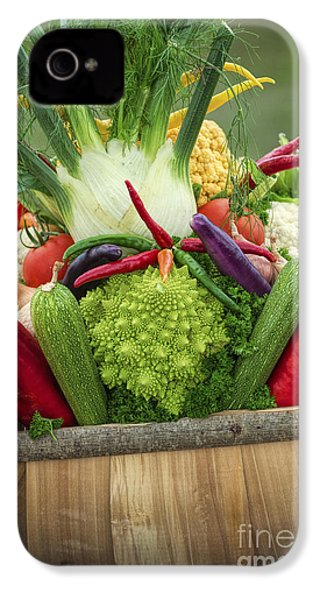 Veg Trug IPhone 4 / 4s Case by Tim Gainey