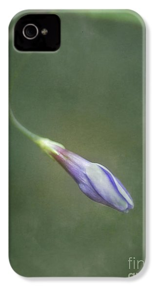 Vinca IPhone 4 Case by Priska Wettstein