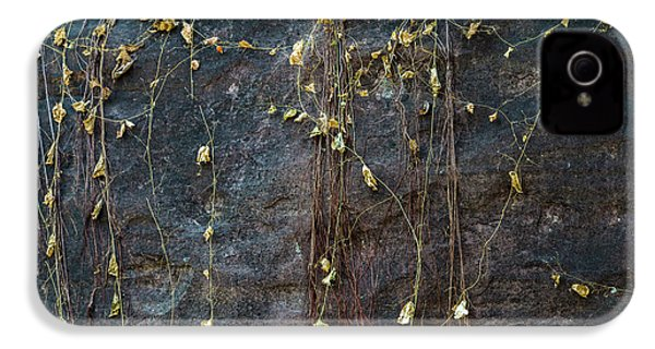 IPhone 4 Case featuring the photograph Vines On Rock, Bhimbetka, 2016 by Hitendra SINKAR