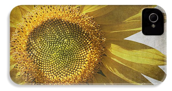 Vintage Sunflower IPhone 4 Case by Jane Rix