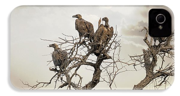 Vultures In A Dead Tree.  IPhone 4 Case by Jane Rix