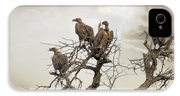 Vultures In A Dead Tree.  IPhone 4 / 4s Case by Jane Rix
