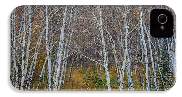 IPhone 4 Case featuring the photograph Walk In The Woods by James BO Insogna