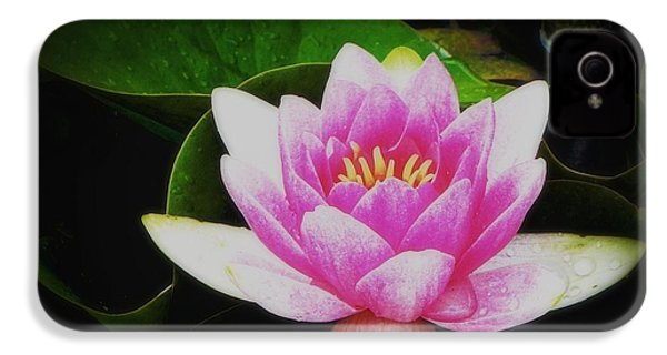 IPhone 4 Case featuring the photograph Water Lily by Karen Shackles