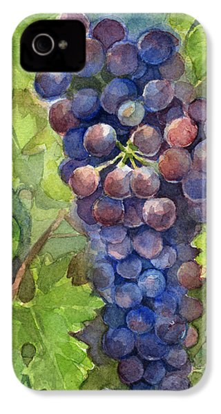 Watercolor Grapes Painting IPhone 4 Case by Olga Shvartsur