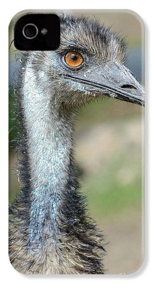 Emu 2 IPhone 4 Case by Werner Padarin