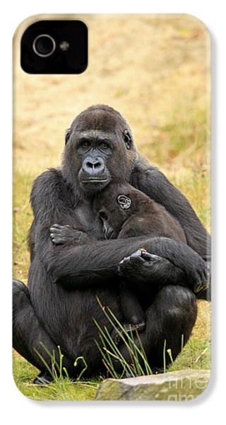 Western Gorilla And Young IPhone 4 Case by Jurgen & Christine Sohns/FLPA