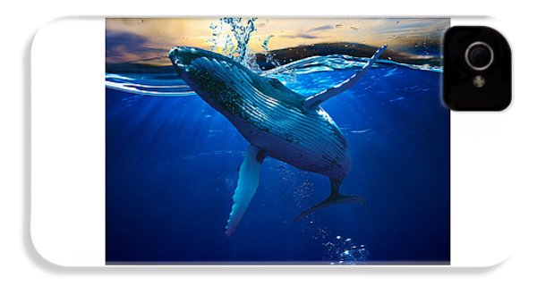 Whale Watching Art IPhone 4 Case