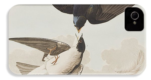 White-bellied Swallow IPhone 4 Case by John James Audubon