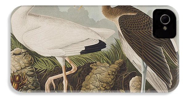 White Ibis IPhone 4 / 4s Case by John James Audubon