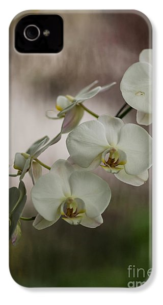 White Of The Evening IPhone 4 / 4s Case by Mike Reid