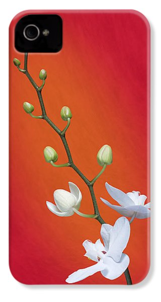 White Orchid Buds On Red IPhone 4 Case