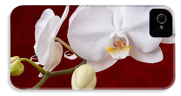 White Orchid Closeup IPhone 4 Case
